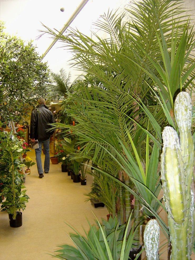 Foto fra Plantelager