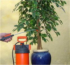Pleje og vedligehold af kunstige planter